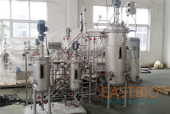 AC Motor Stainless Steel Bioreactor 30L-300L Mechanical Seal PH2.0-12.0±0.1