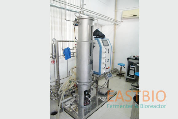 Pt-100 Probe Lab Scale Bioreactor Stainless Steel Airlift Fermenter Floor Stand